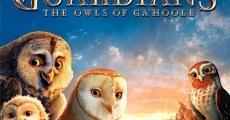 Película Ga´Hoole: La leyenda de los guardianes