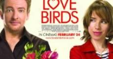 Película Love Birds