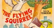 Película Pato Donald: La ardilla voladora