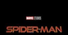 Ver película Spider-Man 3