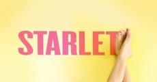 Película Starlet
