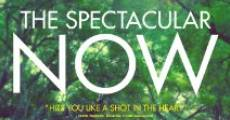 Película The Spectacular Now