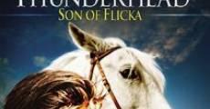Película Thunderhead, hijo de Flicka