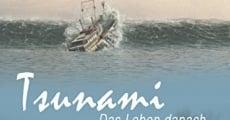 Película Tsunami: más allá de la tragedia