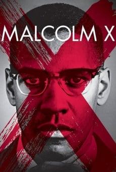 Malcolm X online