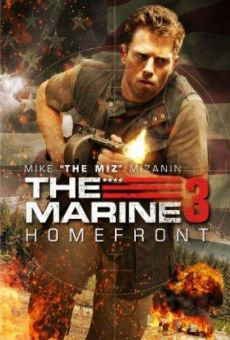 The Marine: Homefront online