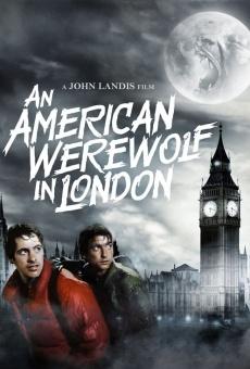 Le loup-garou de Londres en ligne gratuit